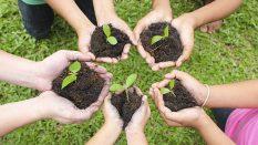 ISO 14001:2015 Çevre Yönetim Sistemi Temel Eğitimi